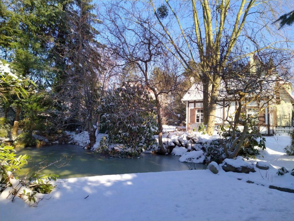 Ansicht vom Garten im Winter
